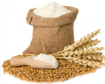 Exporter of Wheat, Wheat Flour, Wheat Flour for Bread